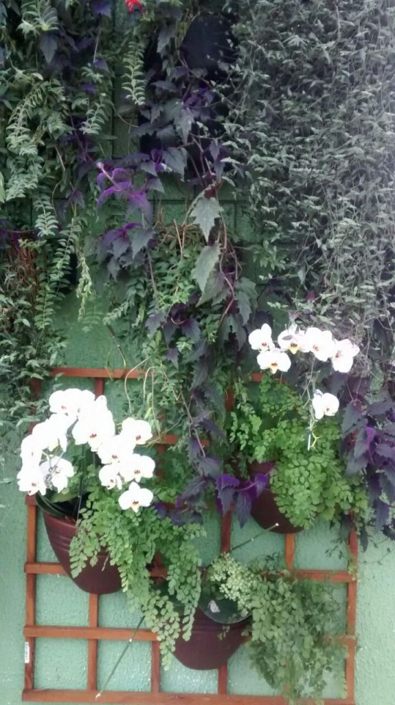 Paisagismo - Jardim vertical com orquídeas